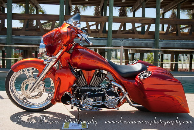 Harley Bagger Custom Paint Jobs 500 x 335 · 178 kB · jpeg