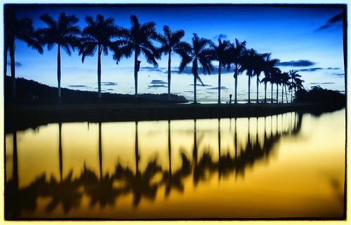 sunrise miami 305 deeringbay shootmiami
