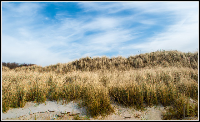 The Dunes of Ristinge