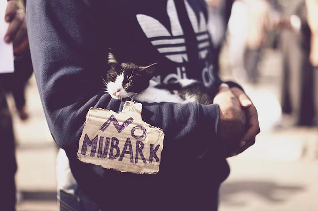 No Mubarak