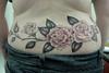 Rosas Roses