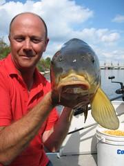 animal, fish, fishing, fish, jigging,