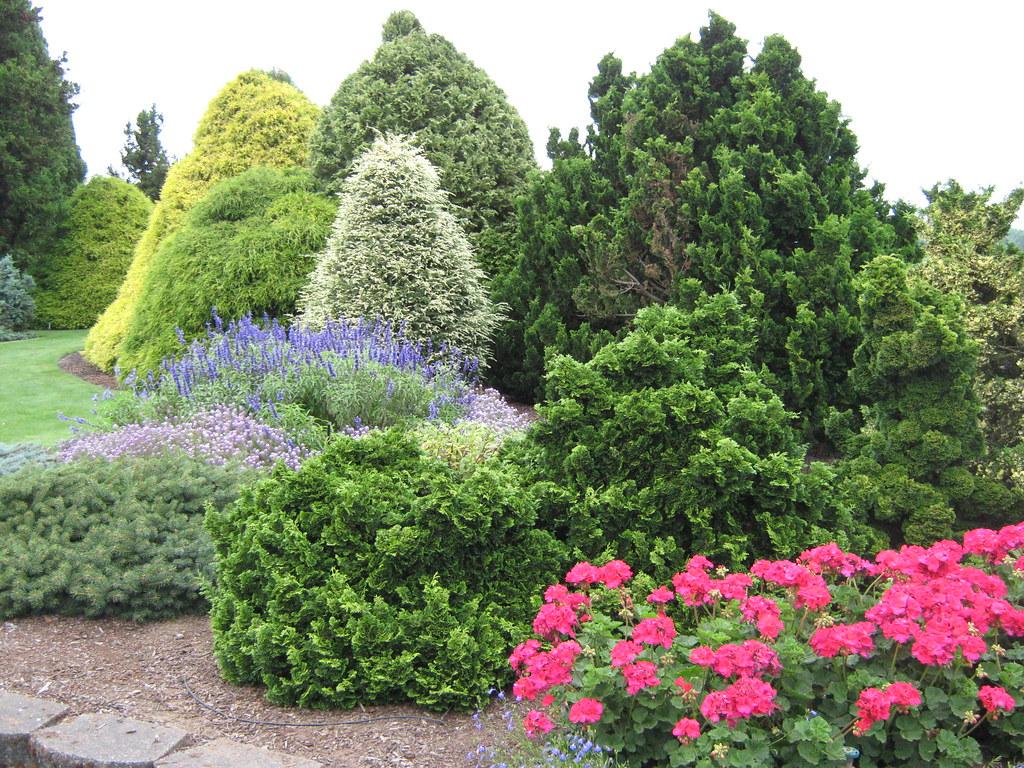 Evergreen Garden (2)