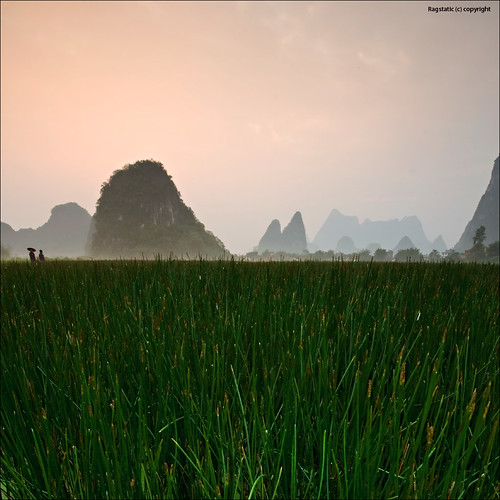 china mist mountain fog sunrise nikon farmers guilin rags crop karst range d700