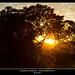 Sunset por Hagens_world