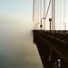 Fog by WesleyM.