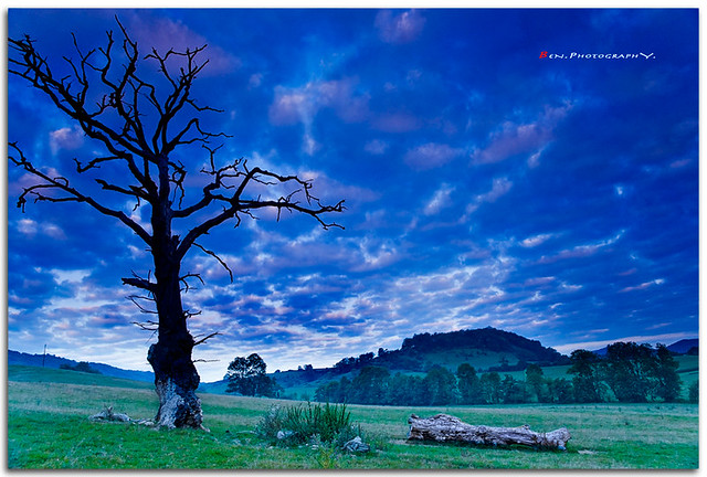 Blue land