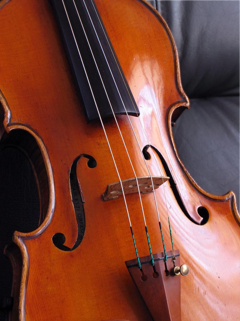 Mon violon.