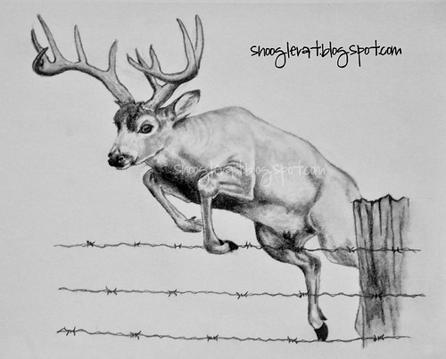 how to draw a deer step by step ehow html