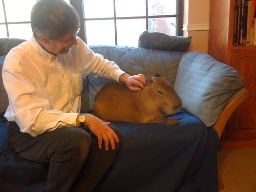 Me and Gari the capybara