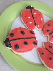 ladybird, produce, food, dessert, snack food,