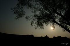 Sunset (석양)