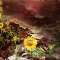 sunflower, flower, plant, painting, still life, modern art, acrylic paint,