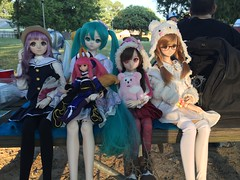 Photos from today's doll meet in the park on my birthday! So much fun and some new people joined us! #dollfiedream #dollmeet #bjd