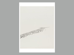 Greg Eason_Disappearing Penguins_Print