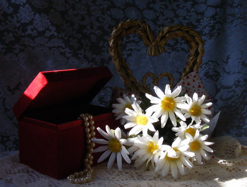 county light sunlight daisies md day heart natural lace maryland valentine pearls daisy valentines wicker available allegany jewelrybox javcon117 frostphotos
