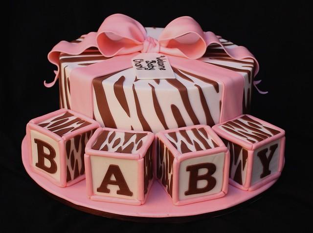 zebra baby flickr photo sharing