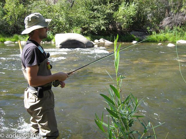 Photo for Kern river fishing