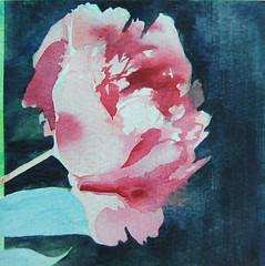 Watercolour. Size: 15 x 15 cm. Sold.</p> <p>Alkuperäinen maalaus, josta tehtiin korttipainatus. Vesiväri. Koko: 15 x 15 cm. Myyty.