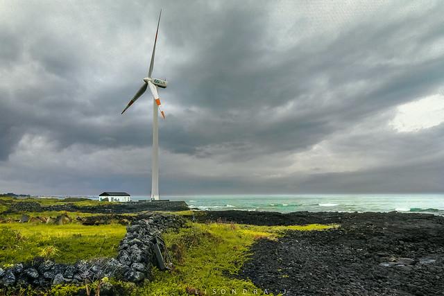 wind through mill