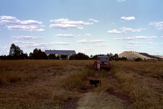 Louisa Downs Homestead from the Front - 1968