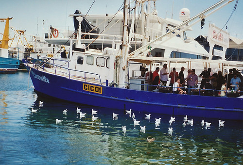 FREMANTLE ON FILM
