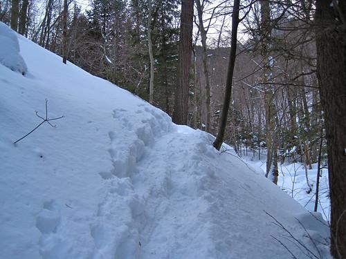 "Eskimo words for ""snow snowshoe magazine"