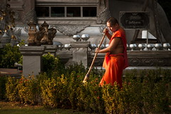 The Sweeping Monk - Thailand