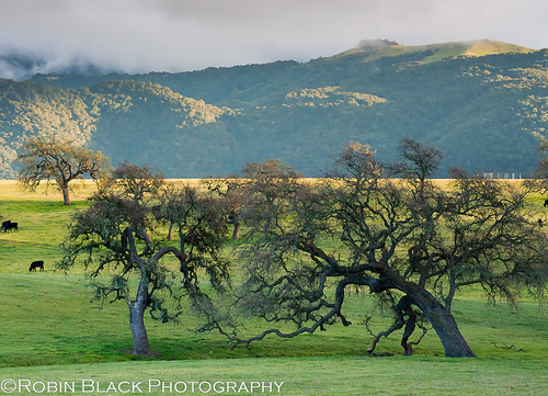 Sunset and storm, Santa Ynez Valley