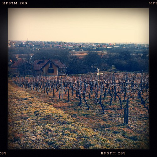 apple analog digital vintage square vineyard filter format effect app iphone koprivnica hipsta hipstamatic