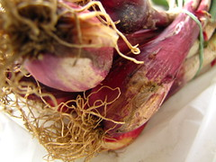 flower arranging(0.0), flower(0.0), floral design(0.0), floristry(0.0), vegetable(1.0), red onion(1.0), shallot(1.0), produce(1.0), food(1.0), onion genus(1.0),
