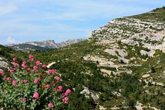 Bureau de Poste de Marseille Luminy Map BouchesduRhne France