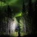 The green singletrack by Dan F Skovli