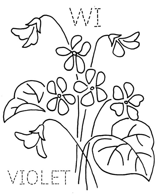 Line Drawing Violet : Wisconsin violet flickr photo sharing