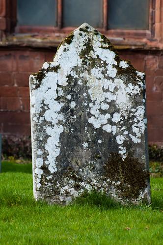 Lichen on gravestone: Worfield