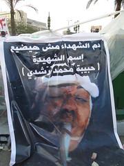 Martyr - Habiba Mohamed Roshdy