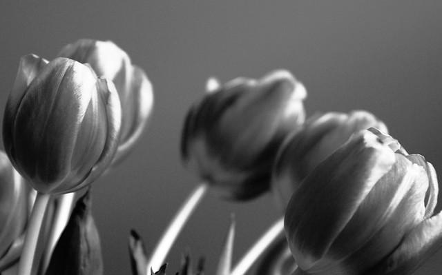 sen kommer våren