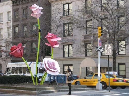 New York metal rose garden, via Flickr: SReed99342