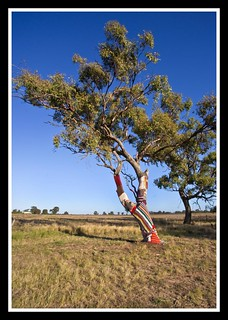 Deniliquin NSW Tree Warmer-1=
