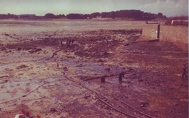 Roscoff - Marée noire 1978 - Amoco
