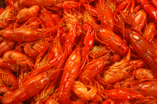 Fresh Louisiana Crawfish