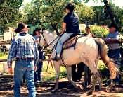 Horseback-Lessons
