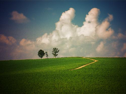 入道雲と親子の木へと続く道(セピア)(1024x768)