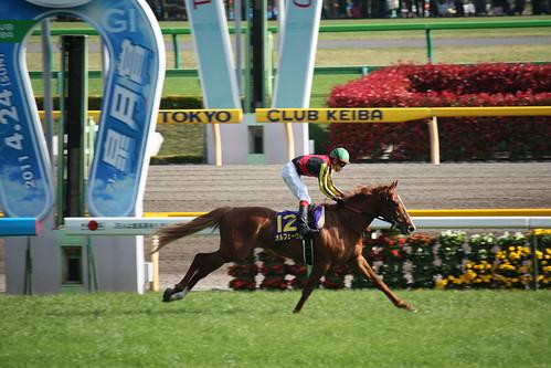 20110424 皐月賞 / Satsuki Sho