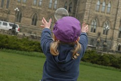 Bubbles on Parliament Hill
