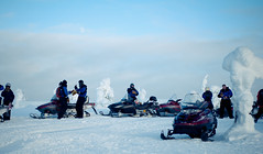 Experience the Snowmobile Safari - Things to do in Helsinki