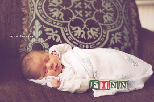 lily-finn9