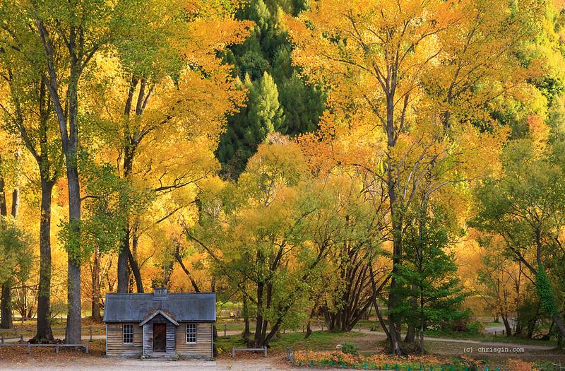 Arrowtown Autumn