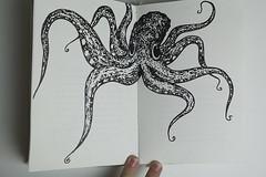 sketch(0.0), design(0.0), octopus(1.0), invertebrate(1.0), marine invertebrates(1.0), drawing(1.0), illustration(1.0),