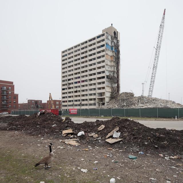 Cabrini-Green Demolition, Goose
